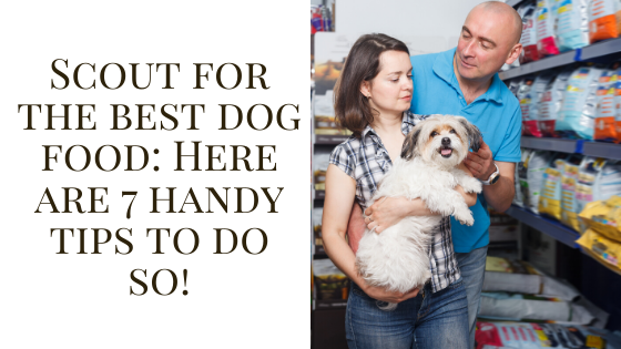 Scout for the best dog food: Here are 7 handy tips to do so!